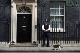 چرا دو وزیر انگلیسی استعفا دادند