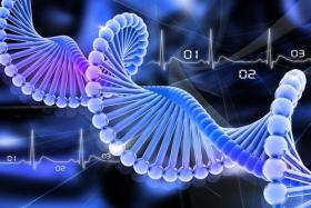 کسب رتبه اول علوم زیستی در غرب آسیا توسط دانشمندان ایرانی